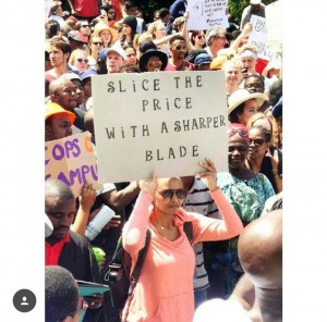 Student holding up a sign criticizing Blade Nzimande, Minister of Higher Education and Training in South Africa       Photograph by: Renata Bossi