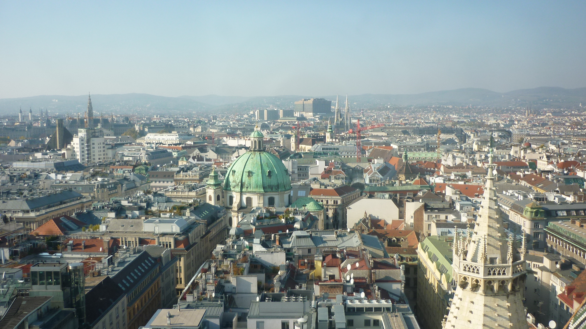 Vienna, Dating and The bachelorette on Pinterest